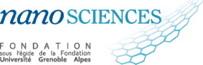 Fondation Nanosciences